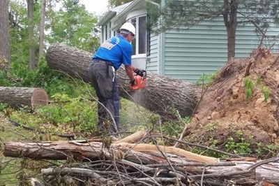 A Southern Baptist volunteer removes one of many trees felled when tornadoes and wind storms struck several communities in Connecticut May 15. Baptist Convention of New England photo