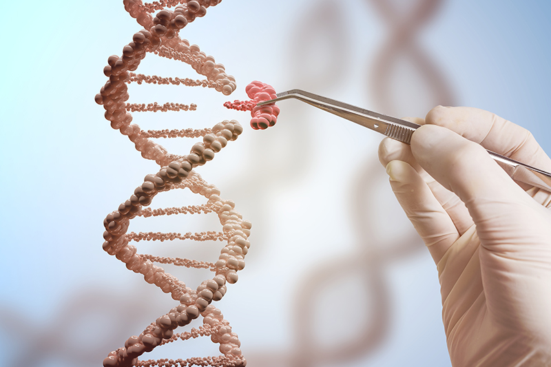 This genetic engineering concept shows a hand replacing part of a DNA molecule in this 3D rendered illustration. Image via Shutterstock