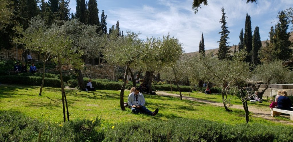 Pilgrims in the garden of Gethsemane
